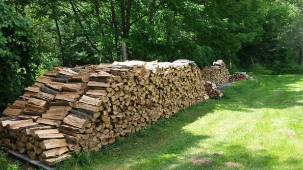2017 Firewood Operations (4)